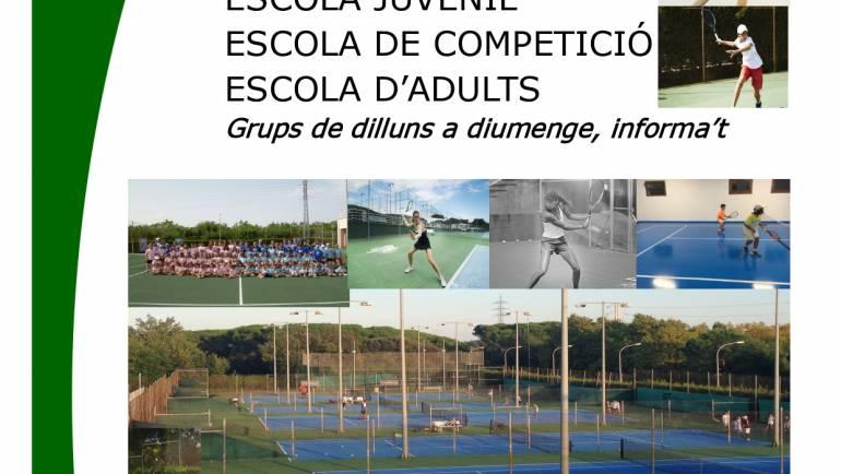 Programas anuales escuela de tenis